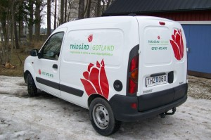 Trädgård Gotlands bil